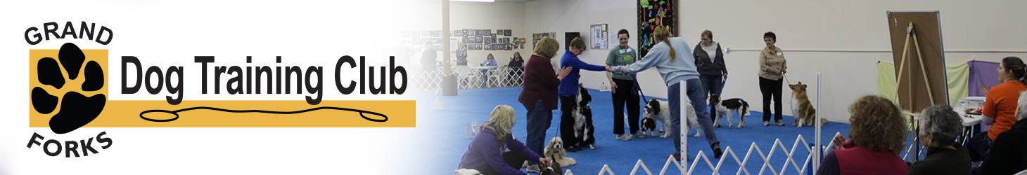 Therapy Dog Training Grand Forks Nd